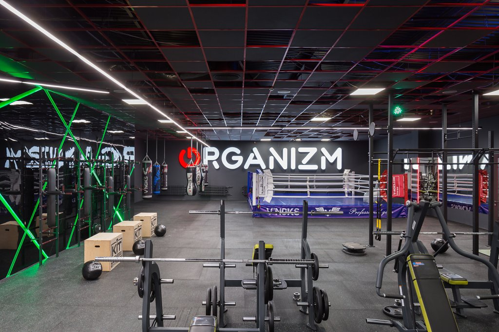 Gym ORGANIZM by Max Yermolov